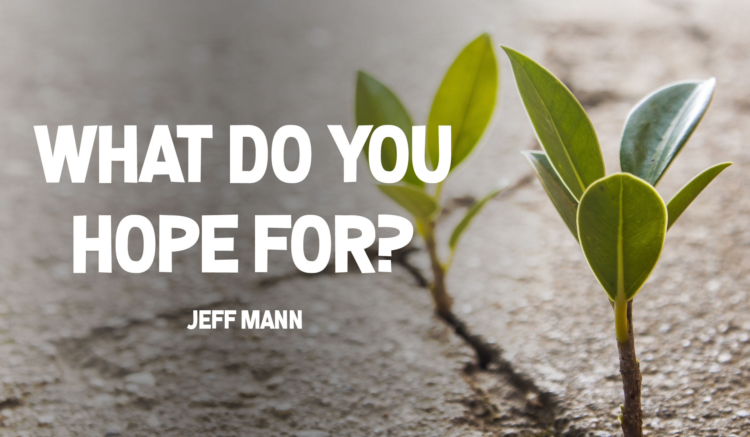 What do you hope for?
