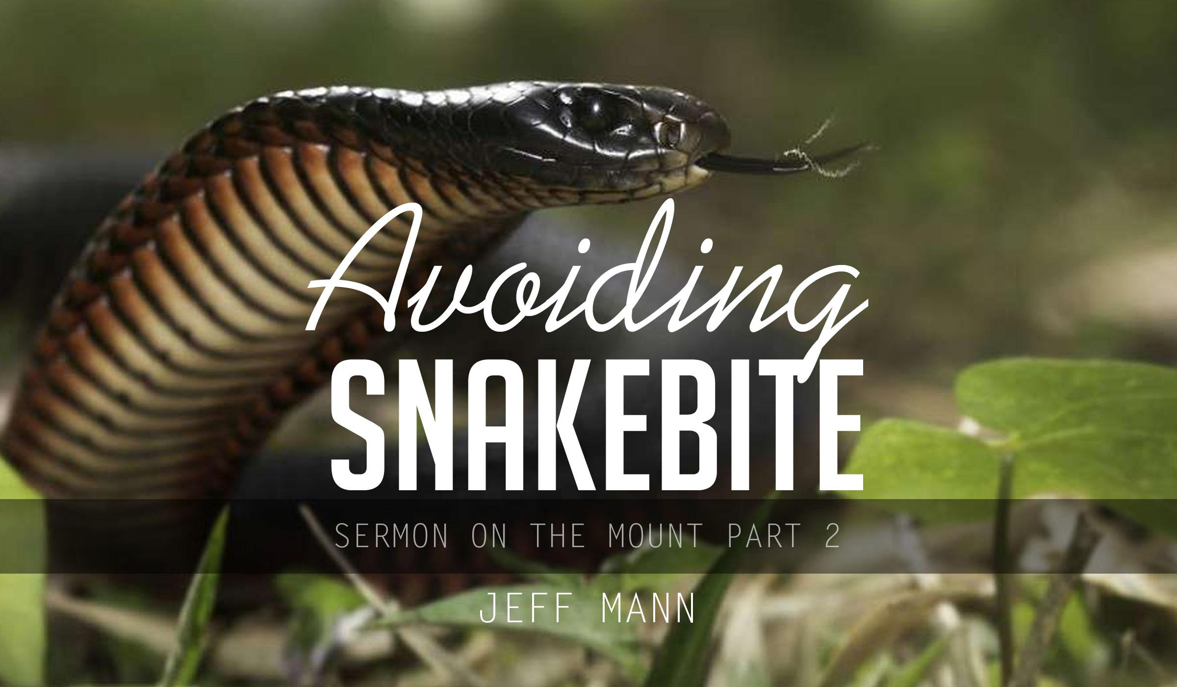 Avoiding Snakebite